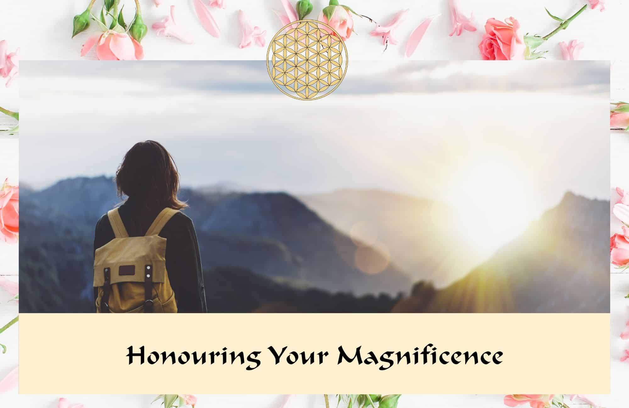 Honouring your magnificence - Flower Essences & Remedies - Flowers for Healing